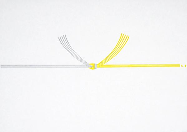 白黄結び切り